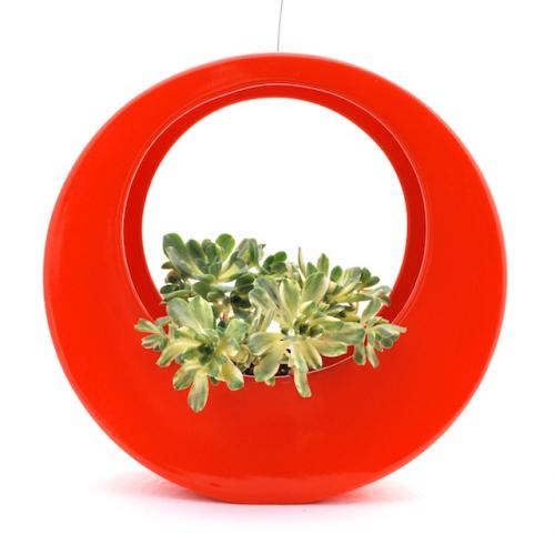 One of My Faves!  The Circle Pot by Potted
