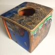 Skateboard tissue box